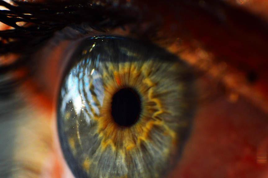 hypnose-ericksonienne-grand-est-lorraine